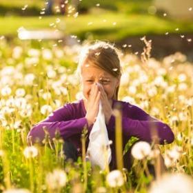 104 pontos allergia vizsgálat
